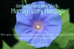 morning glory mondays