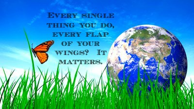 butterflly it matters