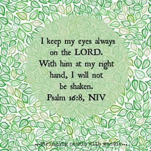 psalm 16-8 Lyn