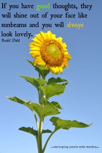 Roald Dahl Sunbeams