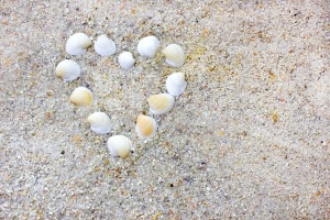 Shell heart on rocky beach