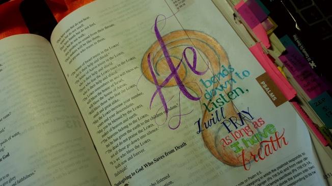 Psalm 116 tammy